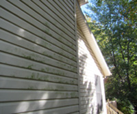 Follow These Siding Maintenance Tips For Algae And Mildew