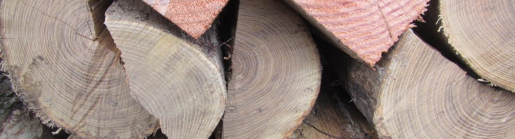 Ohio Department of Agriculture Offers Tips for Purchasing Firewood